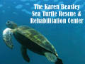 Karen Beasley Sea Turtle Rescue and Rehabilitation Center Topsail Island Attractions