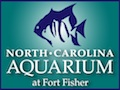 North Carolina Aquarium at Fort Fisher Carolina Beach and Kure Beach Shops